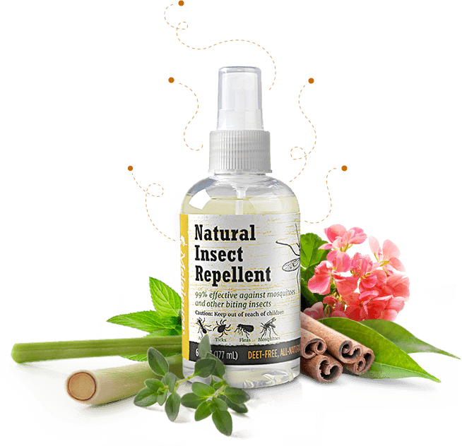 all natural insect repellant the study